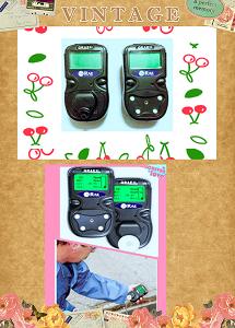 PGM-2400便携式气体检测仪