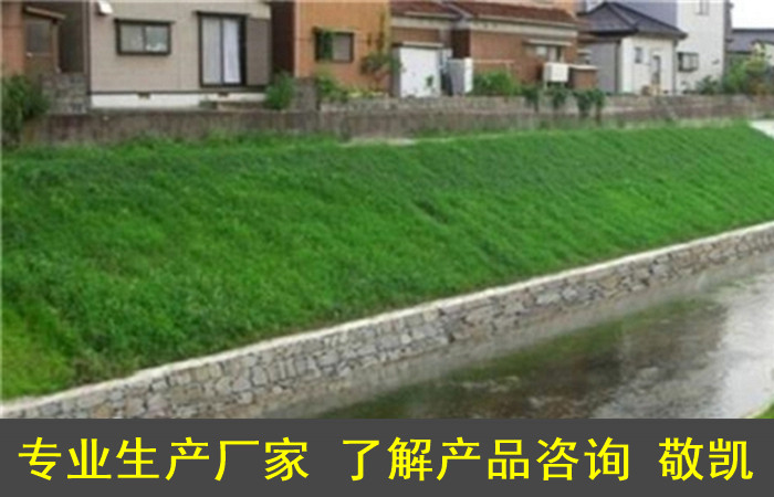 护坡袋潍坊厂家保护水土流失